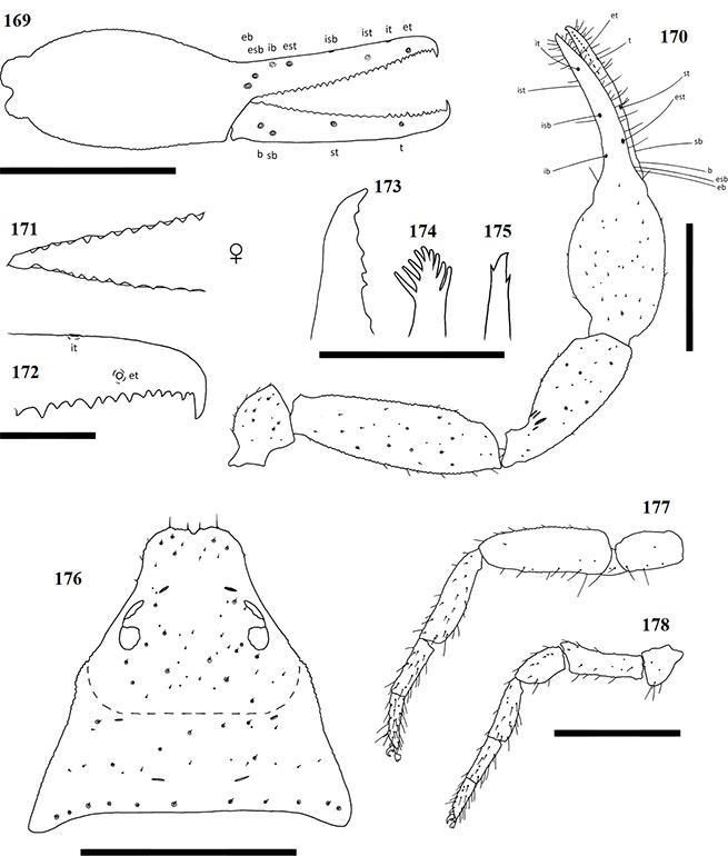 Figs-169-178-(G_deceptor-Diagrams)