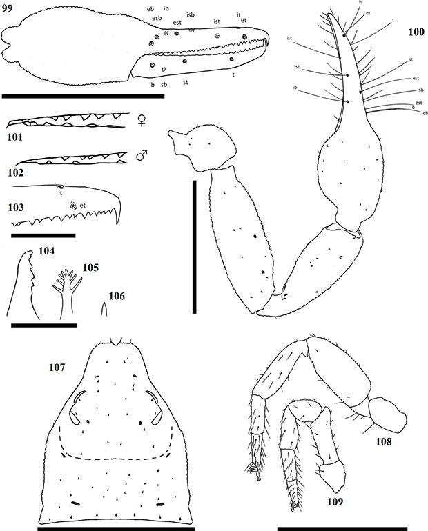 Figs-99-109-(A_minutus-Diagrams)
